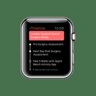 Apple Watch 42mm Copy 16